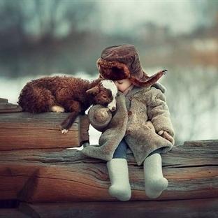 Çocuklar ve hayvanların dostluk fotoğrafları