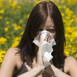 Egzama (Dermatit) Deri Hastalığı – Belirtileri ve