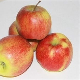 Elma diyeti ile bir haftada dört kilo verin!