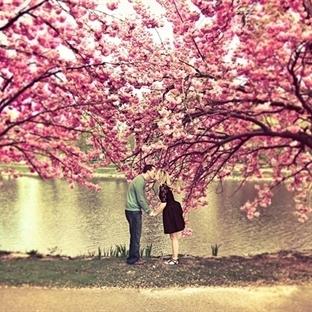 Her Bahar Aşık Olanlar