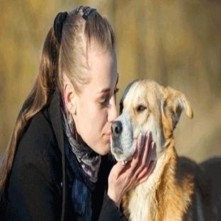 Köpekler Kıskançlıklarını Bakın Nasıl Gösterir?