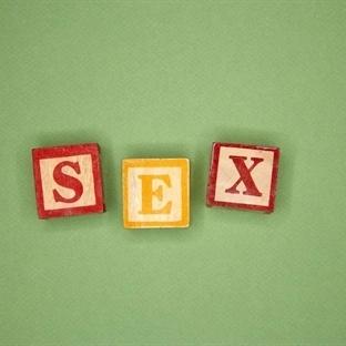 Seksör Kimdir, Ne İş Yapar?