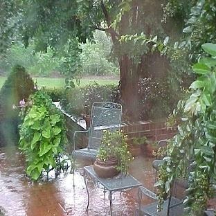 Yaz Yağmuru Gibi !!