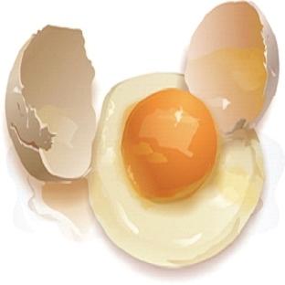 Yumurtanın İnanılmaz Faydaları