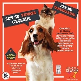 Cevahir'de 23 Nisan coşkusu sokak hayvanları için