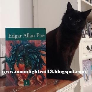 Edgar Allan Poe * Bahar Okuma Şenliği 2015