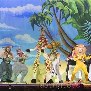 Madagascar Live Show'a Gidin Eğlenin