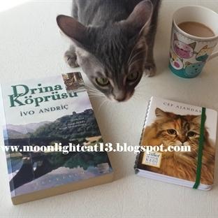 Okuma Halleri, Fotoğraflarla - Drina Köprüsü / İvo
