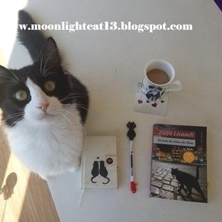 Okuma Halleri, Fotoğraflarla - Bir Kedi, Bir Adam,