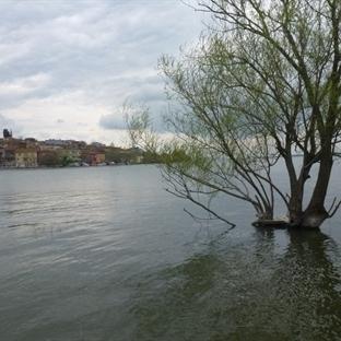 İstanbul'a Komşu Cennet Göl Kenarı