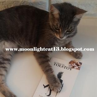 İvan İlyiç'in Ölümü - Tolstoy * Bahar Okuma Şenliğ
