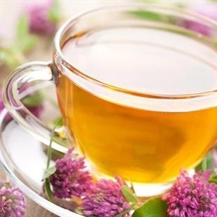 Ayça Kaya Zayıflatan Çay Tarifleri