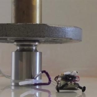 Kendi Ağırlığının 100 Katını Taşıyabilen Robotlar