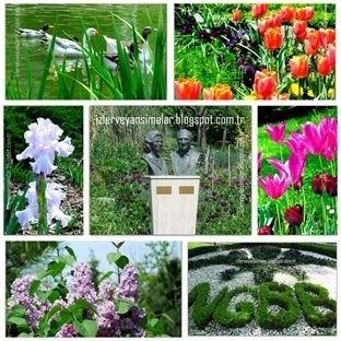 Nezahat Gökyiğit Botanik Bahçesinde Bahar Renkleri