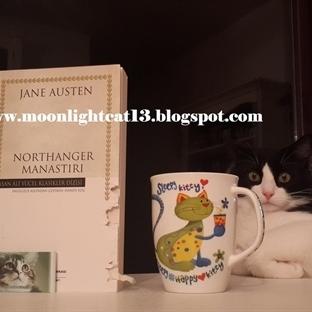 Okuma Halleri, Fotoğraflarla - Northanger Manastır