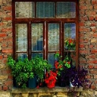Pencere Ve Kahve Falı Yorumu