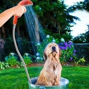 Piknikte Duş Almak İster Misiniz?