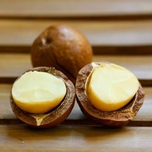 Yeni Favorimiz: Macadamia Yağı