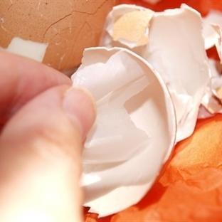 Yumurta Zarının İnanılmaz Faydası