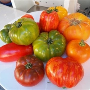 Bavyera Mutfağı-4: Patates ve Diğer Sebzeler