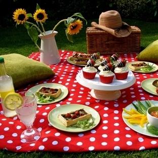 Günlerden Piknik Günü