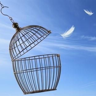 Kafesin dışındaki özgürlük