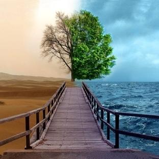İki yol