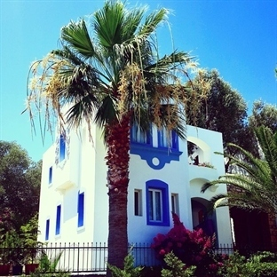 Mavisiyle Beyazıyla Bodrum Evleri ve Denizi
