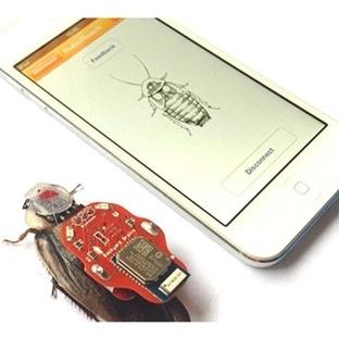 Sayborg Hamam böcekleri Hayat Kurtarabilir