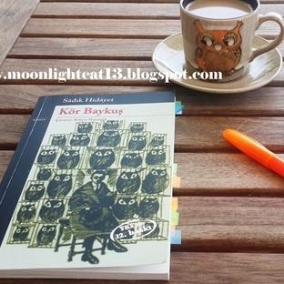 Kör Baykuş - Sadık Hidayet * Yaz Okuma Şenliği 201
