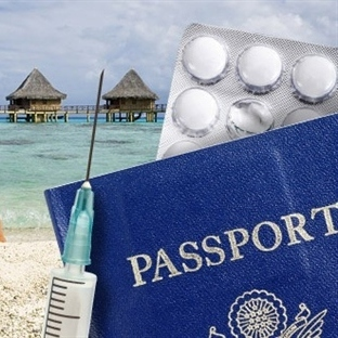 Seyahat Aşıları Nelerdir?