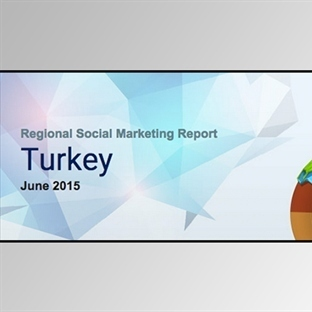 SocialBakers Haziran 2015 Türkiye Sosyal Medya Rap