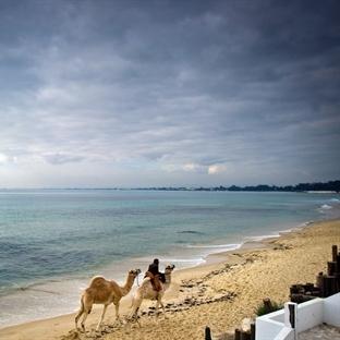 Tunus'a Aşık Olabileceğiniz 22 Sebep !