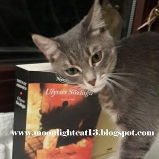 Ulysses Sözlüğü - Nevzat Erkmen * Bahar Okuma Şenl