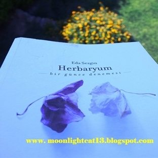 Herbaryum - Eda Sezgin / Kısa Kitap Festivali ♥