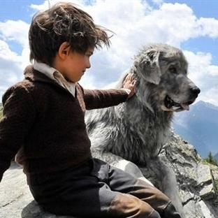 Köpekleri konu edinen en iyi 12 film