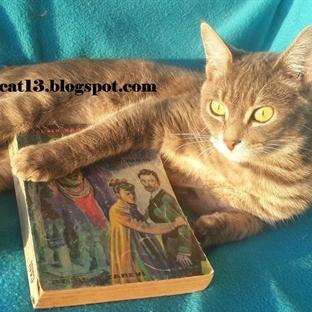 Okuma Halleri, Fotoğraflarla - Cadı - Toraman /