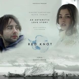 Red Knot : Balinaların Şarkısı