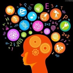 Beyin Hakkında Az Bilinen 10 İlginç Bilgi