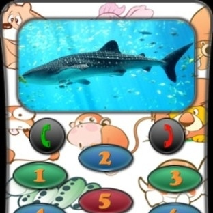 Hayvanlı ipad iphone oyunları