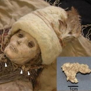 En Eski Peynir 3800 Yıllık