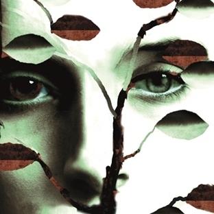 Laurie Halse Anderson'ın Ödüllü Romanı Türkçede