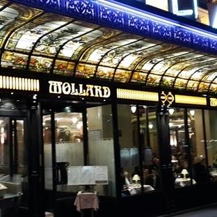 Parisli Mollard ile Zamanda Yolculuk