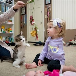 Sakat Küçük Kız ile Üç Patili Kedinin Dostluğu