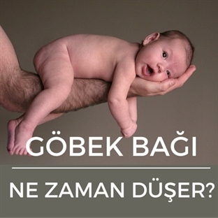 Bebeklerde Göbek Bağı Ne Zaman Düşer?
