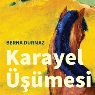 Berna Durmaz'dan Yeni Öyküler