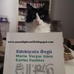 Edebiyata Övgü - Mario Vargas Llosa, Carlos Fuente