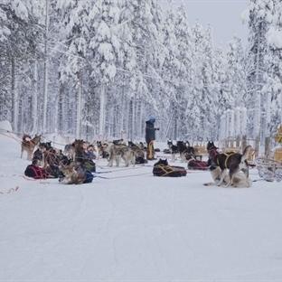 Karlar Altında Laponya