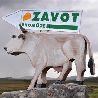Kars'ın Gravyer Fabrikası; Zavot Köyü