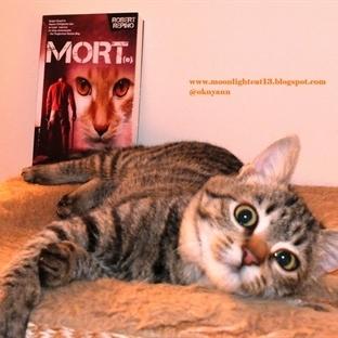 Okuma Halleri, Fotoğraflarla - Mort(e) / Robert Re